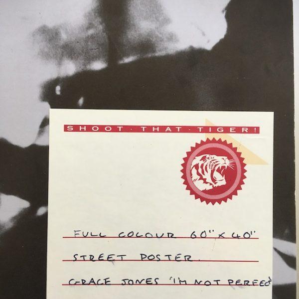 Grace Jones The Original Production Artwork for I'm Not Perfect Poster