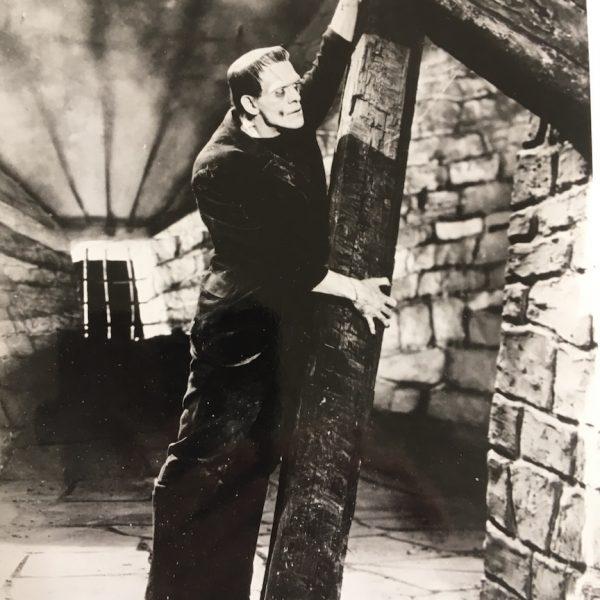 Frankenstein 3 Production Movie stills